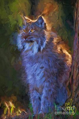 Bob Cat Art Print