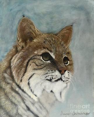 Bobcats Painting - Bob by Jayne Schelden
