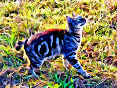 Photograph - Bobbed Kitty by Alice Gipson