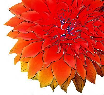 Pyrography Digital Art - Bob's Flower by Cindy Edwards