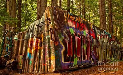 Photograph - Box Car Along The Cheakamus River by Adam Jewell