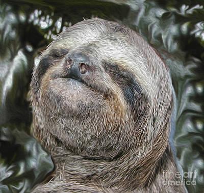 Boca Sloth Art Print by Bruce Stanfield