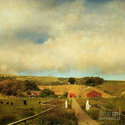 Photograph - Bodega Bay Farmstead by Charlene Mitchell