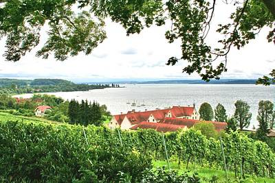 Photograph - Bodensee by Gordon Elwell