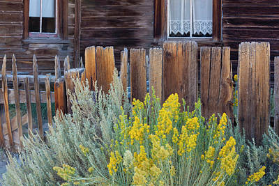Architectural Art Photograph - Bodie, California, Usa by Art Wolfe