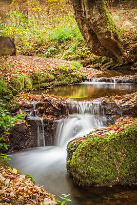 Black Rock Yellow Leaves Water Photograph - Autumn Stream by Christine Smart