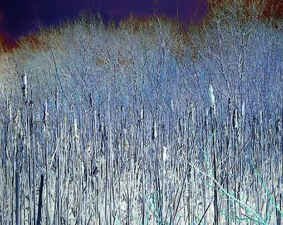 Land Scape Digital Art - Bog In Hoar Frost by A Blackwell