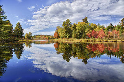 Photograph - Bog Stream Reflections Hdr 01 by Jim Dollar
