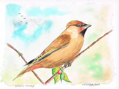 Dibujos Painting - Bohemian Waxwing by Carlos G Groppa