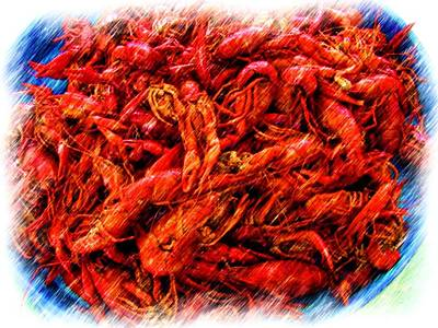Photograph - Boiled Cajun Crawfish by Ronald Olivier