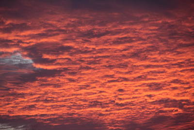 Photograph - Boiling Sky by Debbie Cundy
