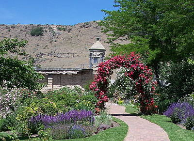 Photograph - Boise Botanical Gardens by Georgia Hamlin