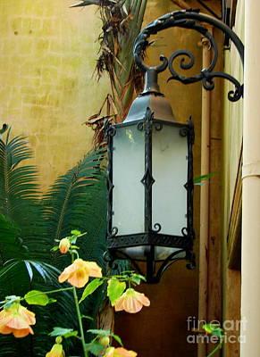 Photograph - Bok Lantern 1 by Lew Davis