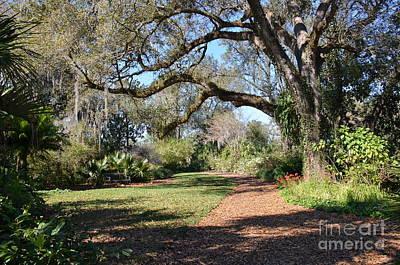 Photograph - Bok Tower Gardens II by Carol  Bradley