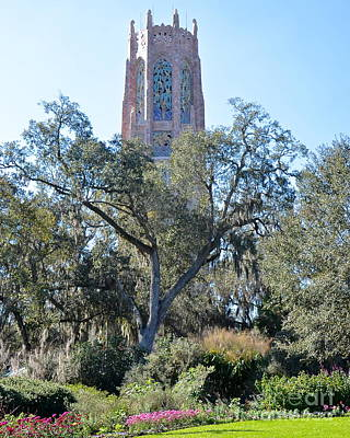 Photograph - Bok Tower Rising Above The Gardens by Carol  Bradley