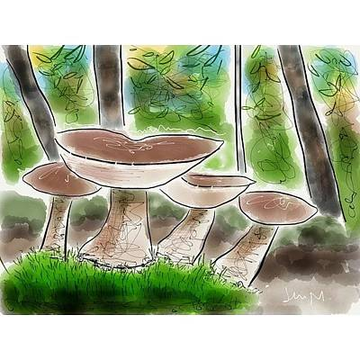 Woodland Photograph - Bolete Mushrooms, Illinois Woods by Jenny Moran