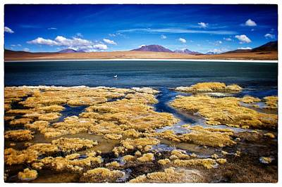 Photograph - Bolivia Deser Lagoon Framed by For Ninety One Days
