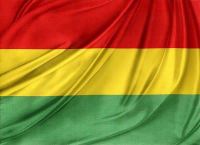 Waving Flag Photograph - Bolivian Flag by Les Cunliffe