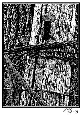Photograph - Bondage by Peter J Sucy