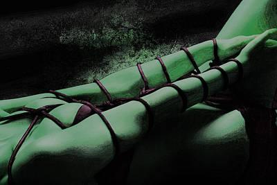 Fetish Photograph - Bondage Shibari Green Impressionism by Rod Meier