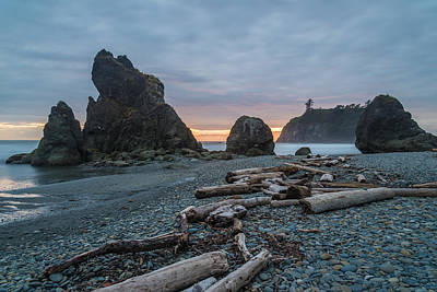 Olympic National Park Photograph - Bone Yard by Kristopher Schoenleber