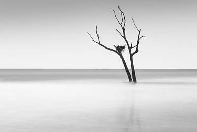 Nest Photograph - Boneyard Beach - II by Ivo Kerssemakers