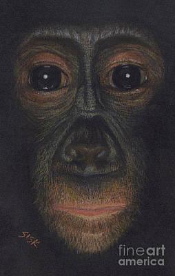 Ape. Great Ape Painting - Bonobo #1 by Rebekah Sisk