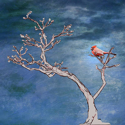 Nature Center Drawing - Bonsai Cardinal by John Haldane