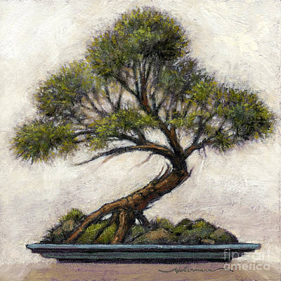 Painting - Bonsai Cedar by Randy Wollenmann