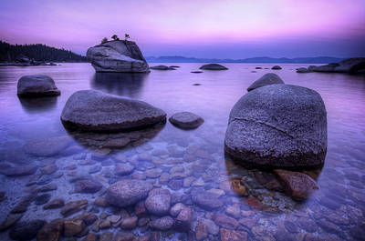 Sand Harbor Photograph - Bonsai Rock by Sean Foster