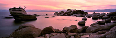 Bonsai Rock Photograph - Bonsai Rock  by Tom Cuccio