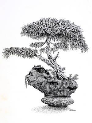 Bonsai Art Print
