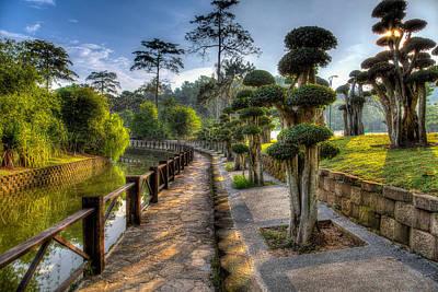 Bonsai Trail Original by Mario Legaspi