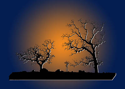 Photograph - Bonsai Tree Family II by Robert Woodward