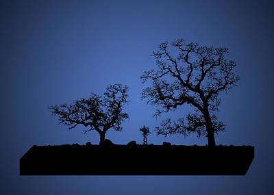 Photograph - Bonsai Tree Family In Blue by Robert Woodward