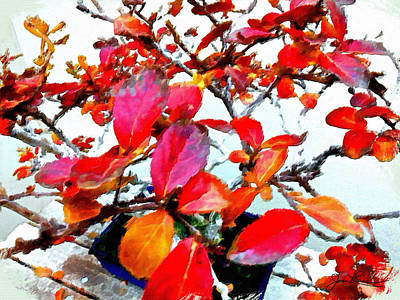 Painting - Bonsai Tree With Red Leaves by Joan Reese