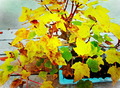 Painting - Bonsai Tree With Yellow Leaves by Joan Reese