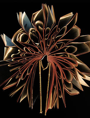 Paper Photograph - Book Flower by Nicklas Gustafsson