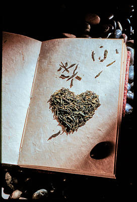 Photograph - Book Of Hearts by Matthew Pace