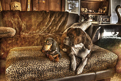 Dachshund Art Photograph - Bookends by William Fields