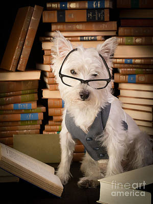Library Photograph - Bookworm Dog by Edward Fielding