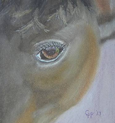 Horse Lover Pastels Painting - Boost My Ego by Cathy Pierce Payne