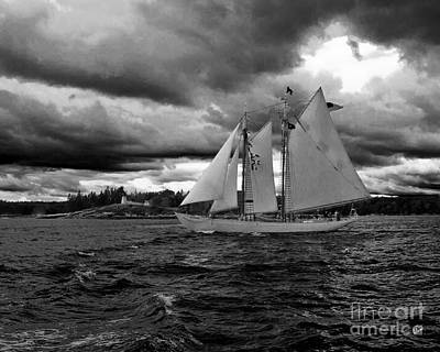 Photograph - Boothbay Harbor by Alana Ranney