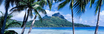 Boras Photograph - Bora Bora, Tahiti, Polynesia by Panoramic Images