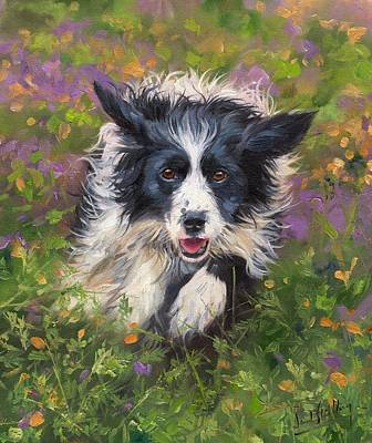Border Collie Painting - Border Collie by David Stribbling