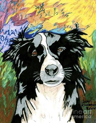 Border Collie Art Print by Jon Kittleson