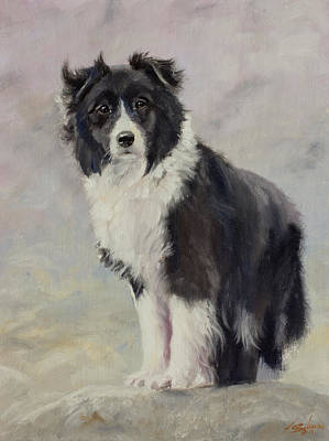 Charcoal Landscape Drawings Painting - Border Collie Portrait IIi by John Silver
