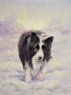 Charcoal Landscape Drawings Painting - Border Collie Portrait V by John Silver