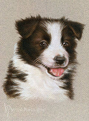 Puppies Mixed Media - Border Collie Puppy Portrait by Victor Powell