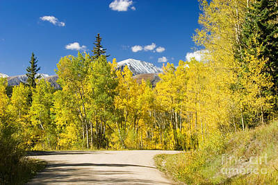 Steven Krull Royalty-Free and Rights-Managed Images - Boreas Pass by Steven Krull